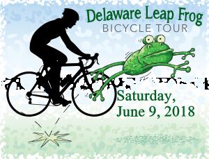 2018 Leap Frog logo
